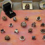 chocolate-rings-exhibition