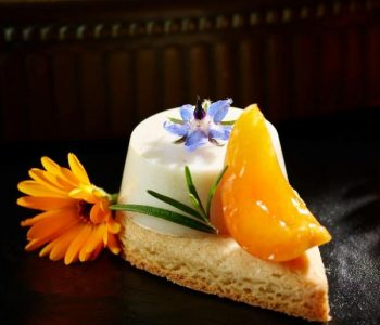 pannacotta-apricots-french-sable-pastry